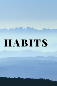 habits of mind, habits of successful people, habits of bloggers, habits of successful bloggers, habits of effective bloggers
